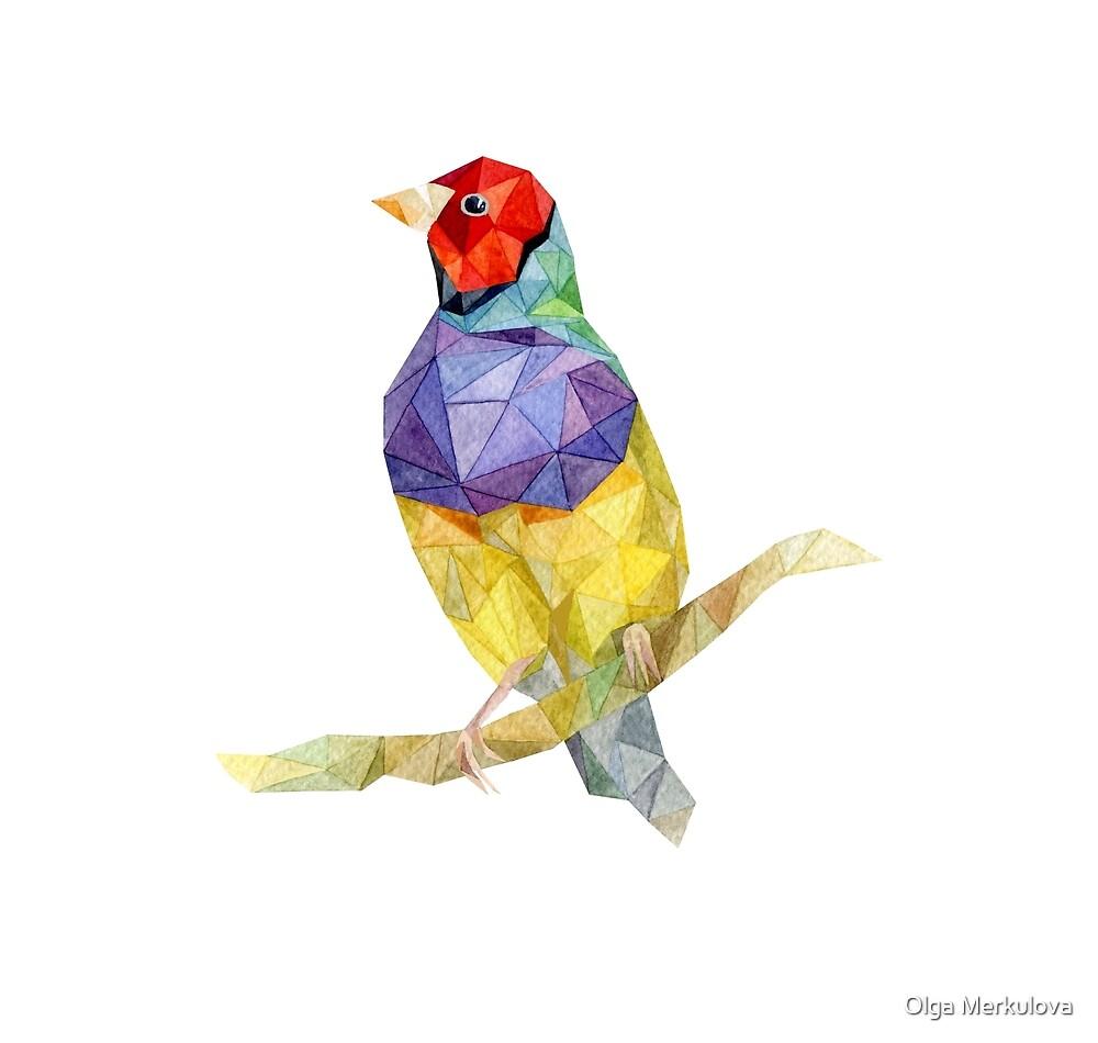 Amadina bird watercolor illustration by Olga Merkulova