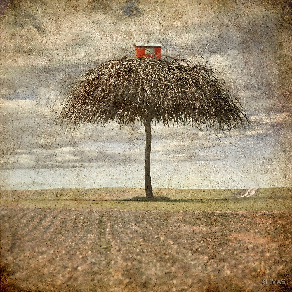 Tree home by KLIMAS