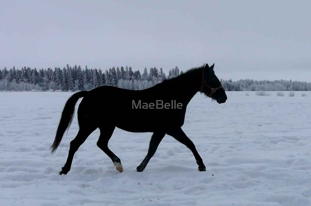 Poetry In Motion by MaeBelle