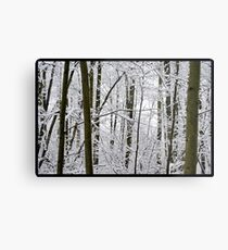 Snow Trees Metal Print