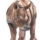Young Rhino by ScalesNPO