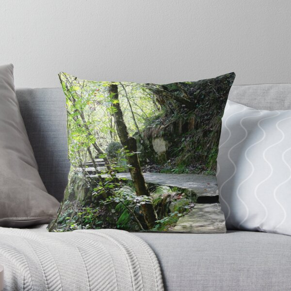 The Ancient Trail to New Adventures Throw Pillow