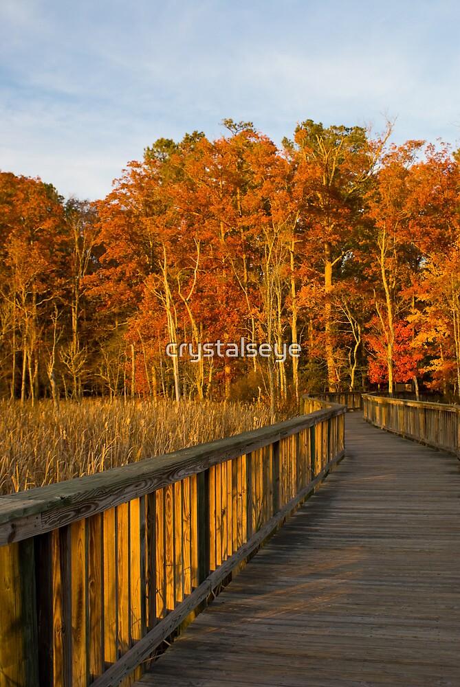 Autumn Walk by crystalseye