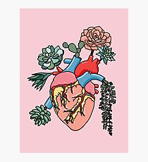 Succulent heart by Sasa Elebea Photographic Print