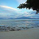 Marshland Dawn 1 by Raoul Isidro