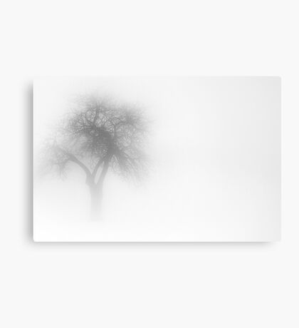One Tree in Fog Canvas Print