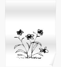 Four Flowers Scribble Poster