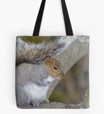Gray Haired Beauty Tote Bag