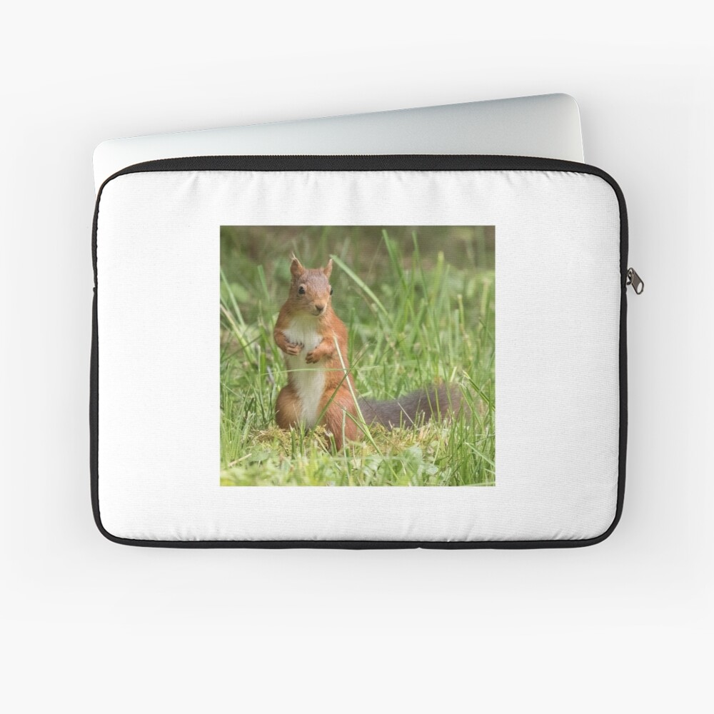 Squirrel in the grass Laptop Sleeve