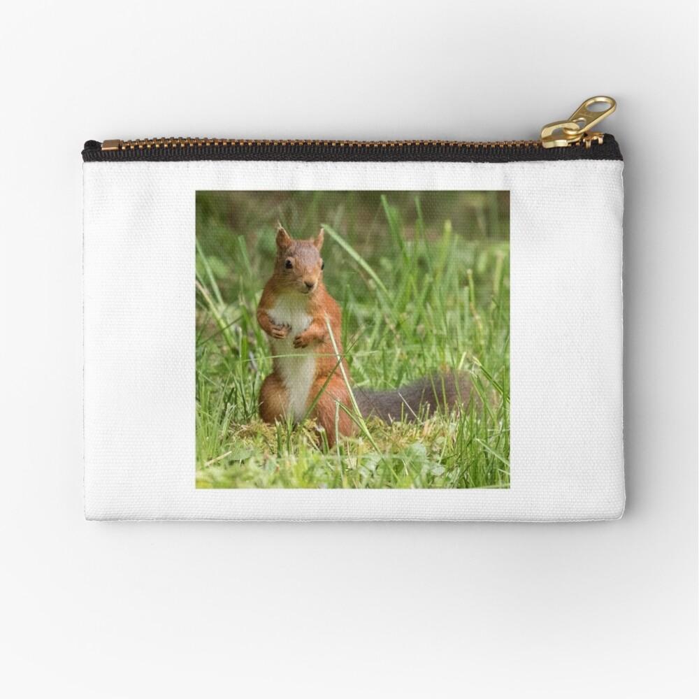 Squirrel in the grass Zipper Pouch