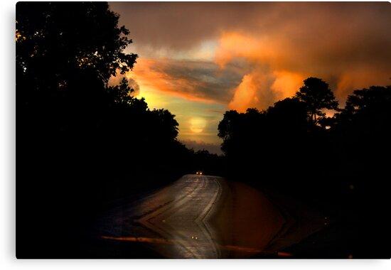 On My Way Home by linaji