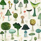 Mushrooms by Katherine Quinn