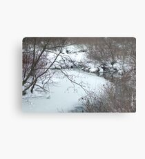 Winter Freeze Metal Print