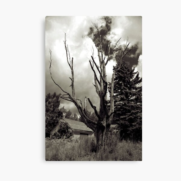 My Time Has Ended Canvas Print
