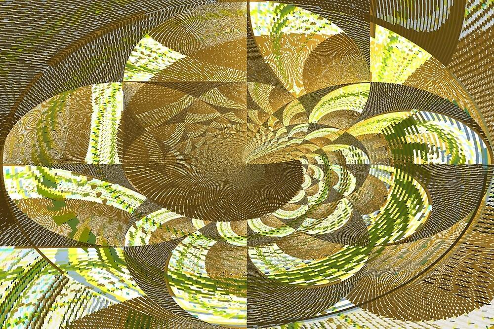 Geometric Flower by Brent Sisson