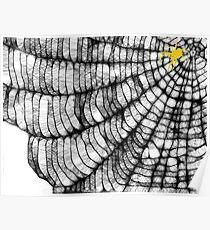 Scribbler Spider Web 2 Poster