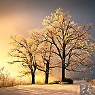 Luminous - Blue Ridge Winter Sunset by Dave Allen