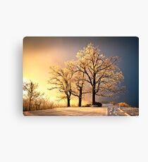 Luminous - Blue Ridge Winter Sunset Canvas Print