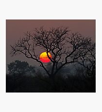 Sunset At Londolozi Photographic Print
