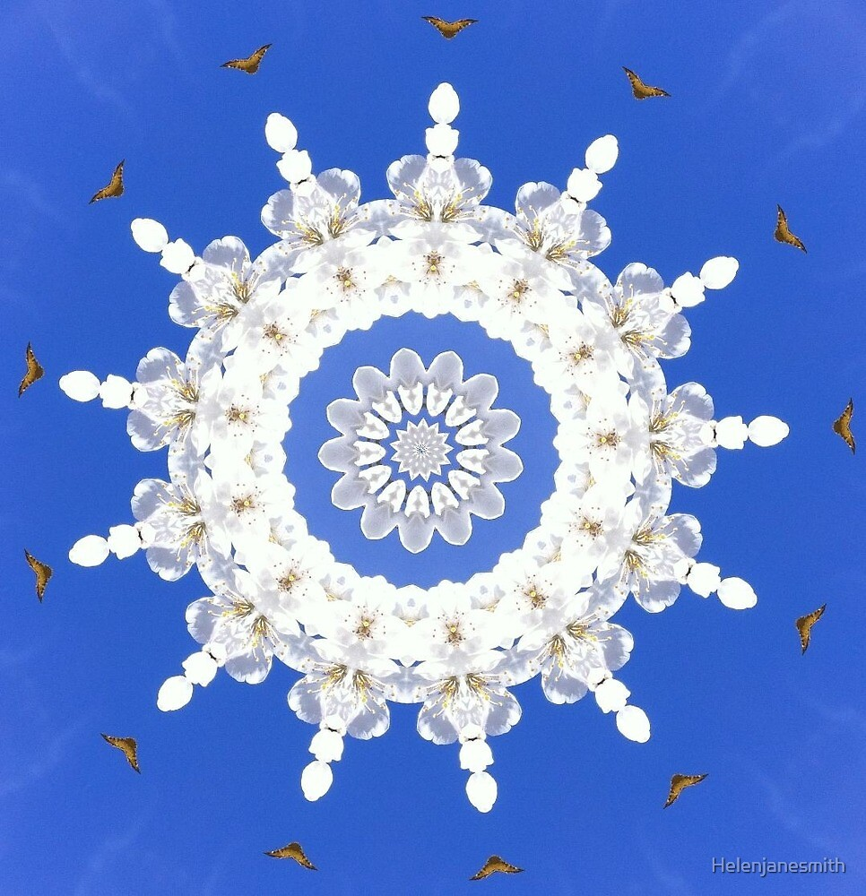 Blossom mandala by Helenjanesmith