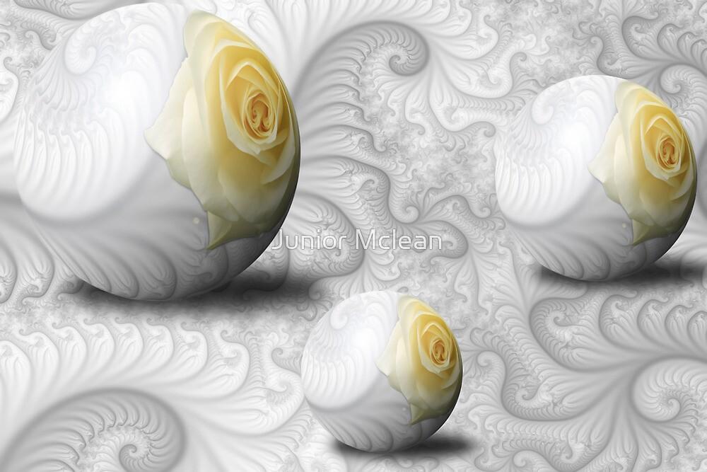 Spheres of Elegancy by Junior Mclean