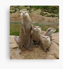 The power of otter Canvas Print