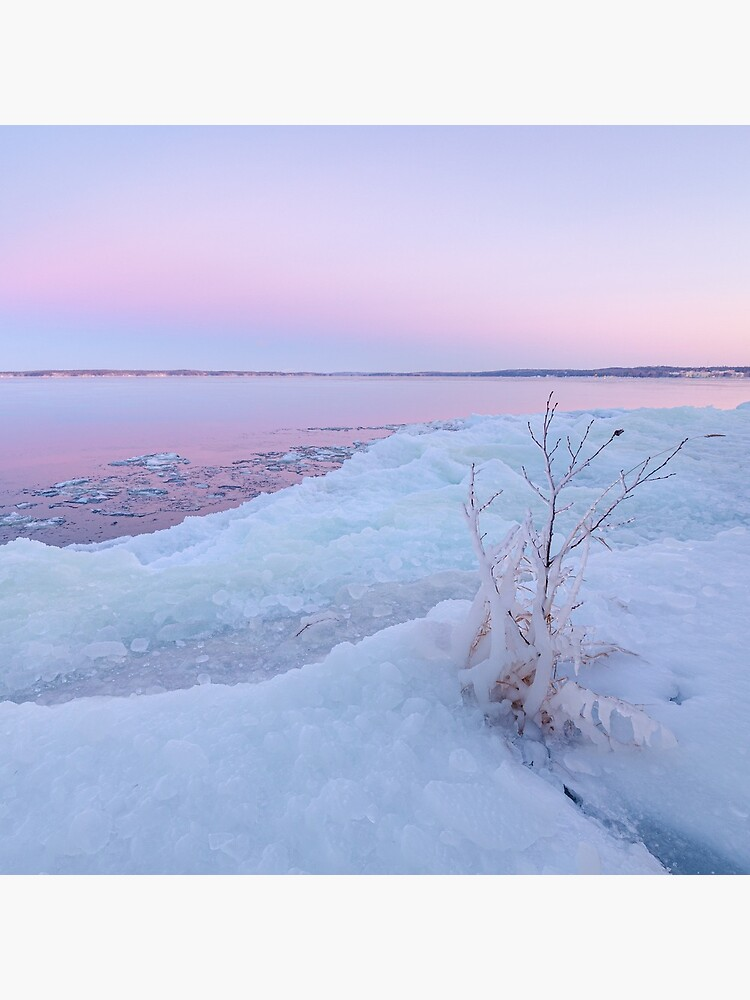 Lake shore scenery at dusk winter in Finland by Juhku