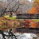 Autumn Bridge by Richard Earl