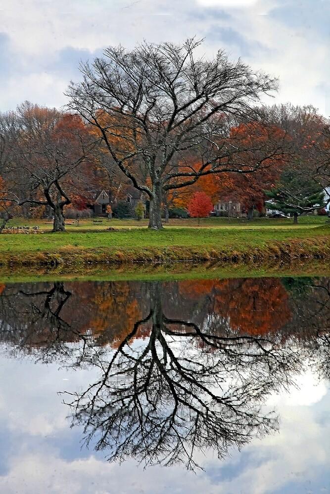 Mirror Lake by Richard Earl