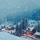 Winter Wonderland by MadliArt
