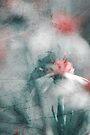 jet de pétales - soft by Aimelle