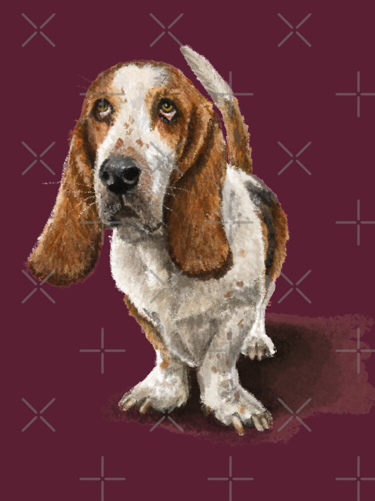 The Basset Hound Dog by elspethrose