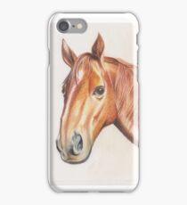 The Bay Horse iPhone Case/Skin