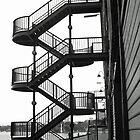 Snappy Landings by TonyCrehan