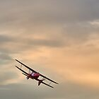 DeHaviland DH90A Dragonfly by Lea Valley Photographic