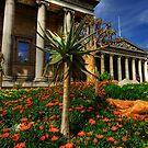 british museum  by adouglas