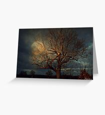 I'm Still Standing Greeting Card