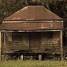 Grumpy Old House by Lincoln Stevens