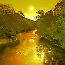 THE GOLD RIVER by leonie7