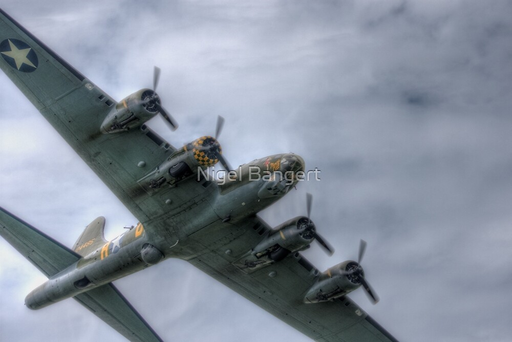 Sally B Over the Top by Nigel Bangert