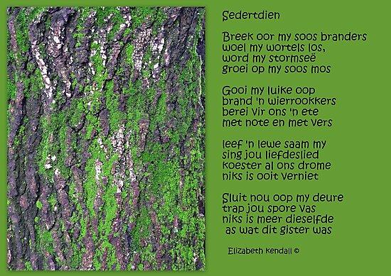 Sedertdien (Afr.) by Elizabeth Kendall