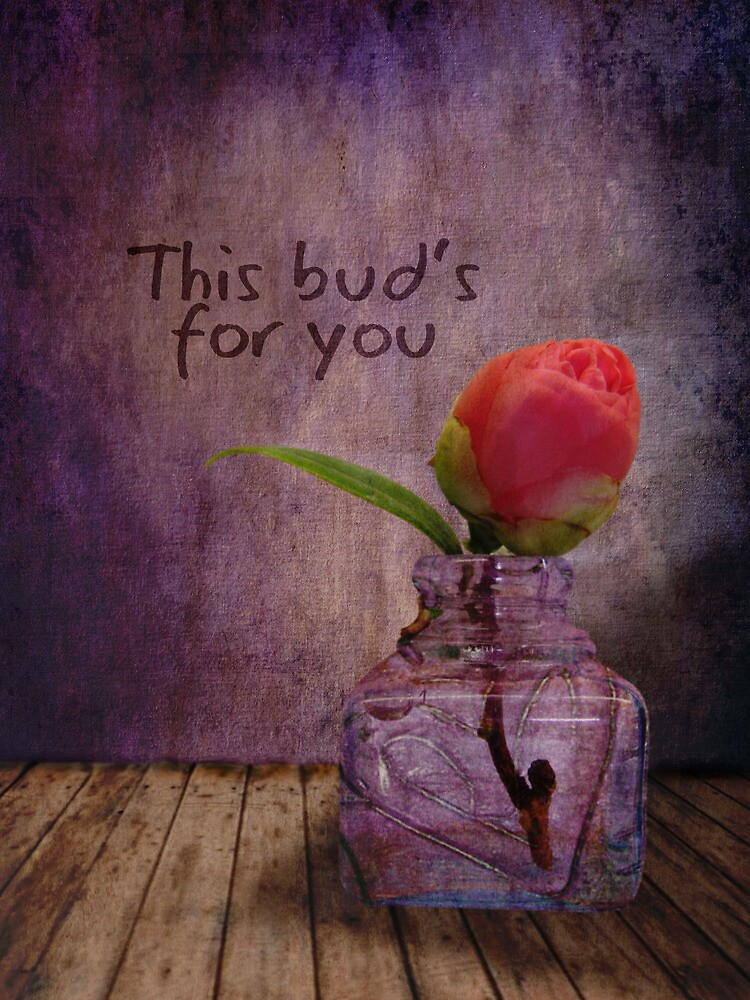 This bud's for you........ by Myillusions