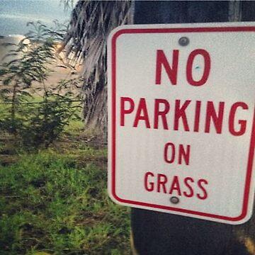no parking on grass by mcfisturanalcav