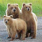 Family Photo!! by Anthony Goldman