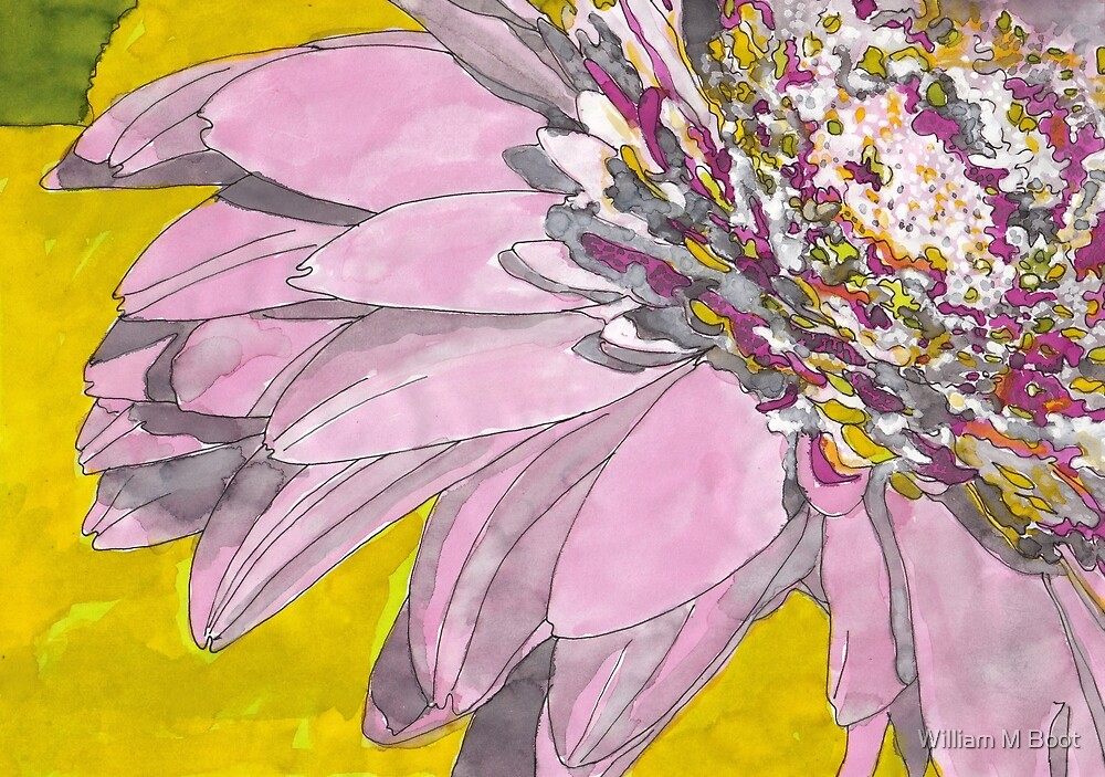 Untitled Flower 17 by William M Boot