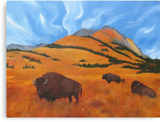 Buffalo on the Foothills by Jane Thuss