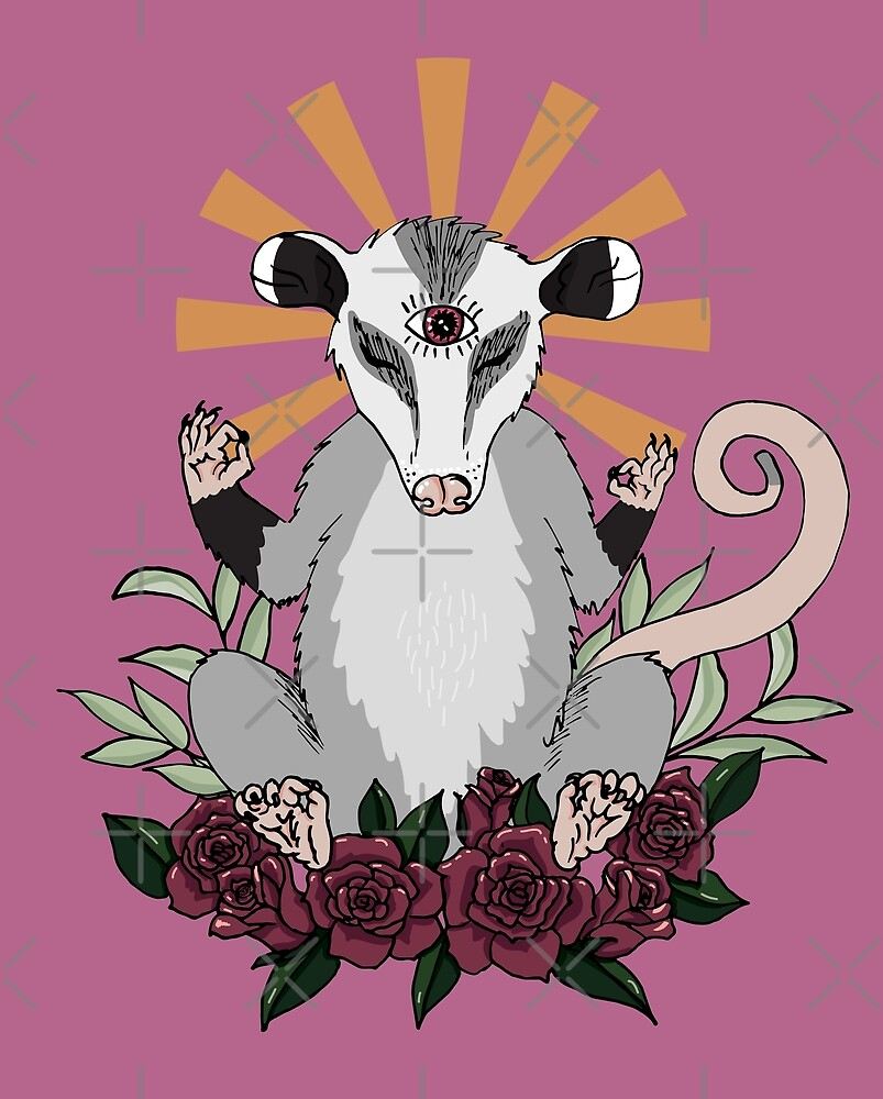 OM possum - radiates chill  by Petra Vitéz