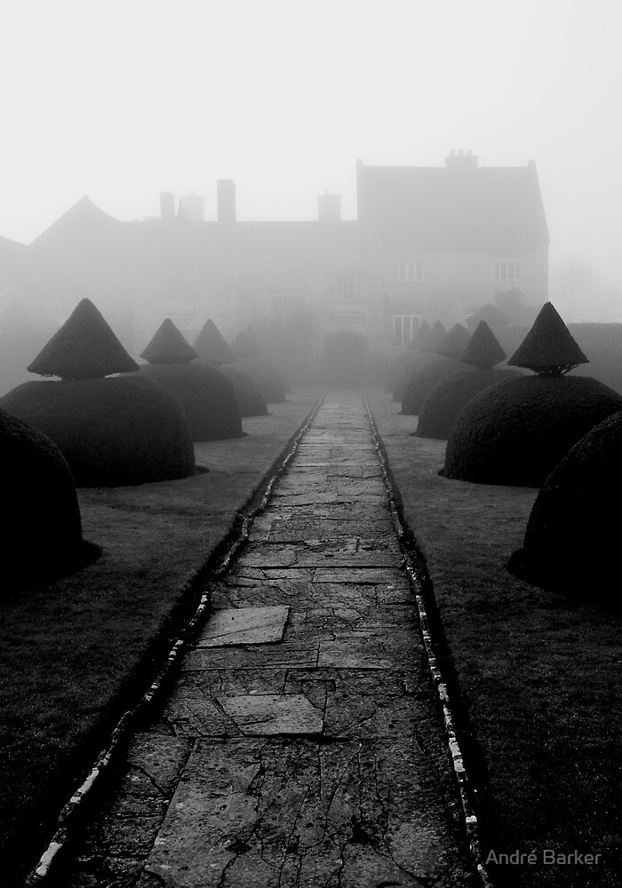 Mist or Fog by André Barker