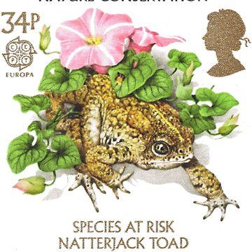 Natterjack Toad - Bufo calamita by staticnomad