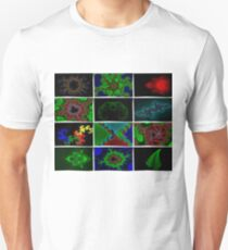 Twelve Fractal Images with Borders T-Shirt